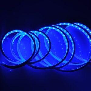CINTA LED SMD5050 60LEDS AZUL